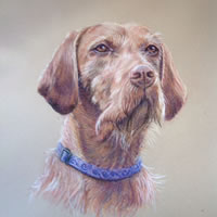 Dog Portrait Painting Commission by Ian Henderson - Redhill Surrey Artist