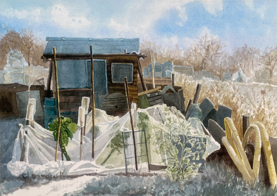 Allotments_ Protecting Paul's Brussels - Reading Berkshire Artist Therese Lawlor