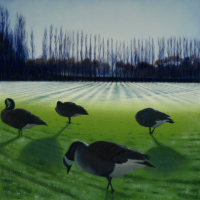 Four Winter Geese – Park Life -Reading Artist  – @Studio21 member Michael Norcross