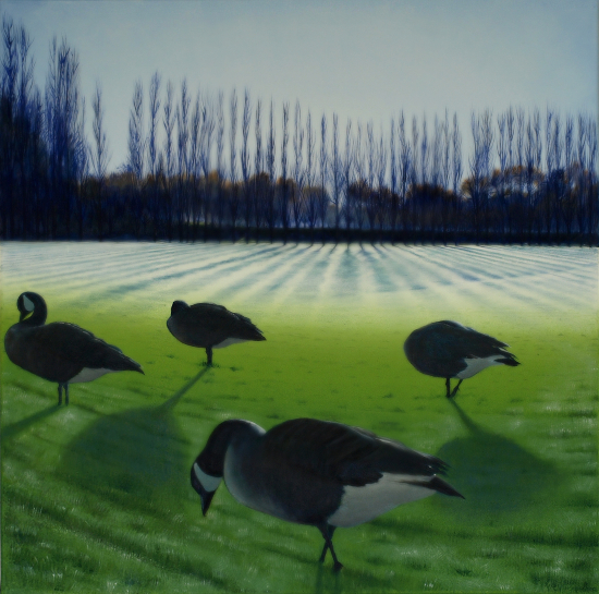 Four Winter Geese - Park Life -Reading Artist - @Studio21 member Michael Norcross