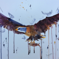 King of the Skies – Eagle in Flight – Impressionist Art by Berkshire Artist Kusum Shabong