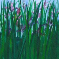 Purple Irises - Shepperton Artist Derek Cooke