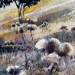 Thistles Evening Sunlight – Watercolour Painting by Reading Guild of Artists member Richard Cave