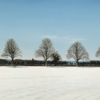 Winter – Trees on The Road to Ashampstead near Reading Berkshire – Michael Norcross