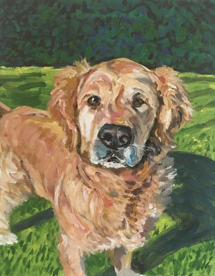Dog Portrait - Max - Cookham Artist Karen Davies