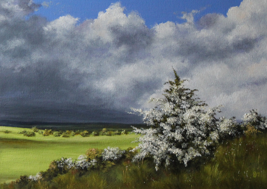 South Downs English Countryside - member of Artists at Goring - Maria Meerstadt