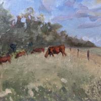 Cows Grazing in Field – Berkshire Landscape Artist and Art Tutor Shelagh Casebourne –