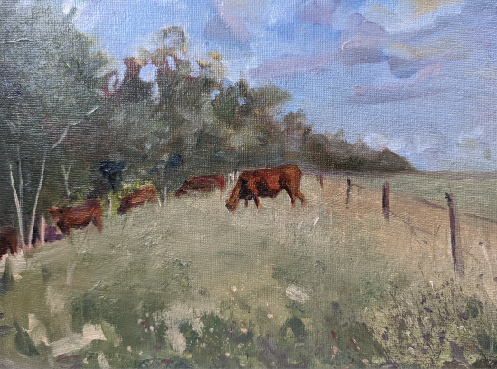Cows Grazing in Field - Berkshire Landscape Artist and Art Tutor Shelagh Casebourne -