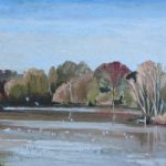 Dinton Pastures Wokingham Berkshire – Seagulls on Lake – Landscape Artist Shelagh Casebourne