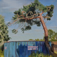 Lonesome Pine – Sky Arts LAOTY Submission Painting – Berkshire Artist Shelagh Casebourne